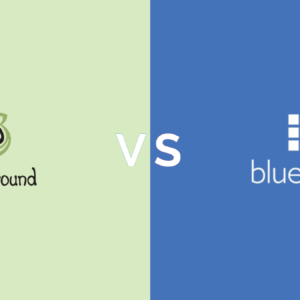 SiteGround vs. Bluehost: Which Shared Host to Choose in 2019