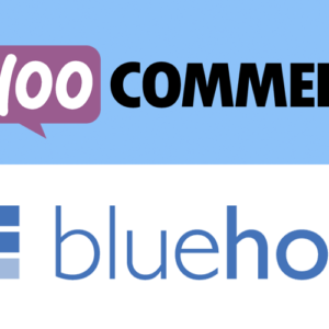 A Concise Bluehost + WooCommerce Review (May 2021)